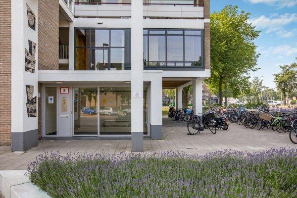 Burgemeester Hogguerstraat