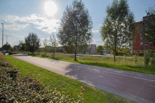 Westerschelde, Zoetermeer