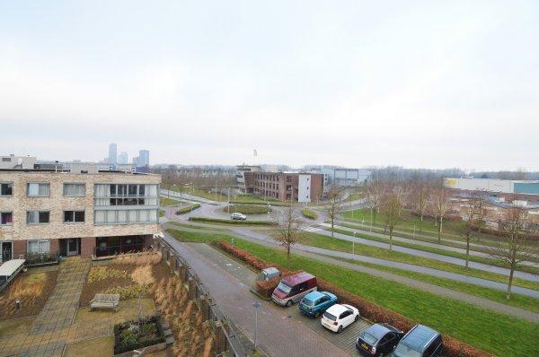 Boomgaardweg 49