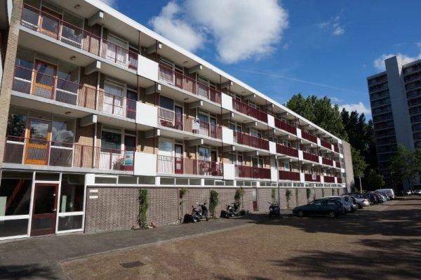 Fideliolaan, Amstelveen