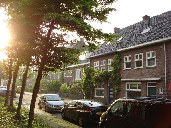 Koestraat, 's-Hertogenbosch