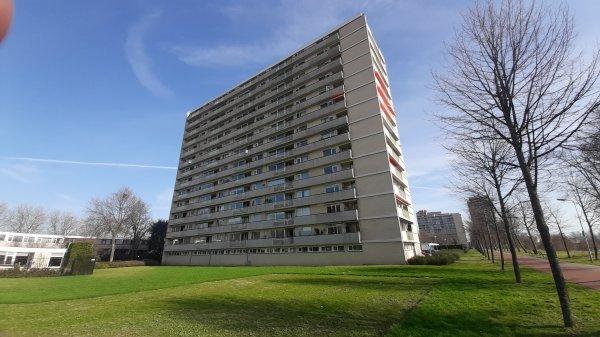 Socrateslaan, 's-Hertogenbosch