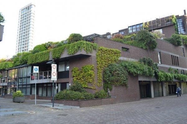 't College, Eindhoven